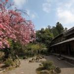 五十嵐邸ガーデン 新潟阿賀野リゾート - サムネイル5